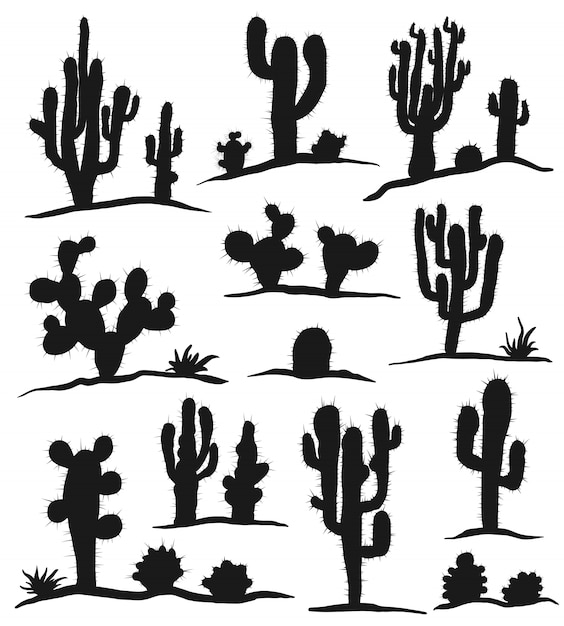 Set of cactuses isolated on white Premium Vector