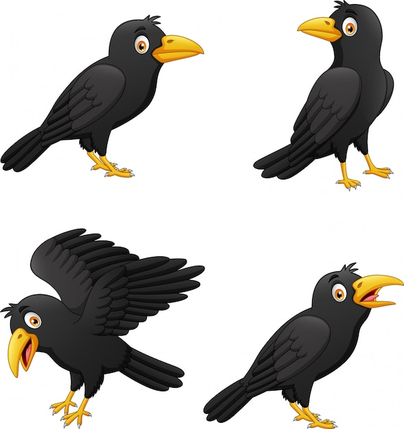 Set of cartoon crow with different expressions Premium Vector
