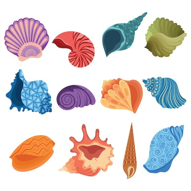 Premium Vector | Set of cartoon seashells. collection of ...