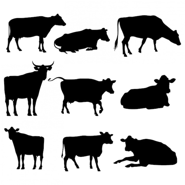 Set cattle silhouettes collection isolated on white Premium Vector