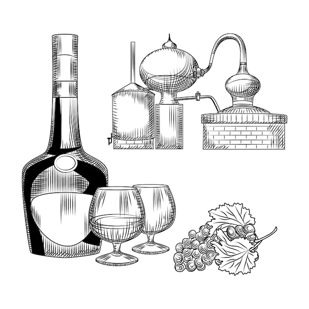 Set of cognac in hand drawn style. bottle of cognac, snifter, bunch of grapes, alembic. Premium Vector