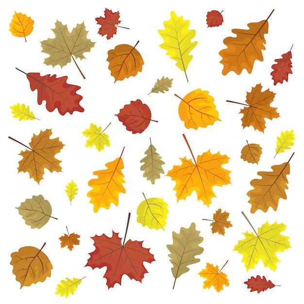 Set of colorful autumn leaves. design elements vector illustration. leafs in random. Premium Vector