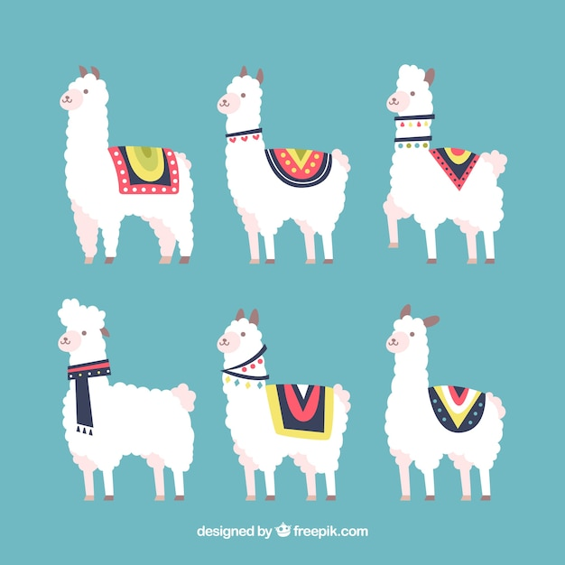 Set di alpaca carino Vettore gratuito