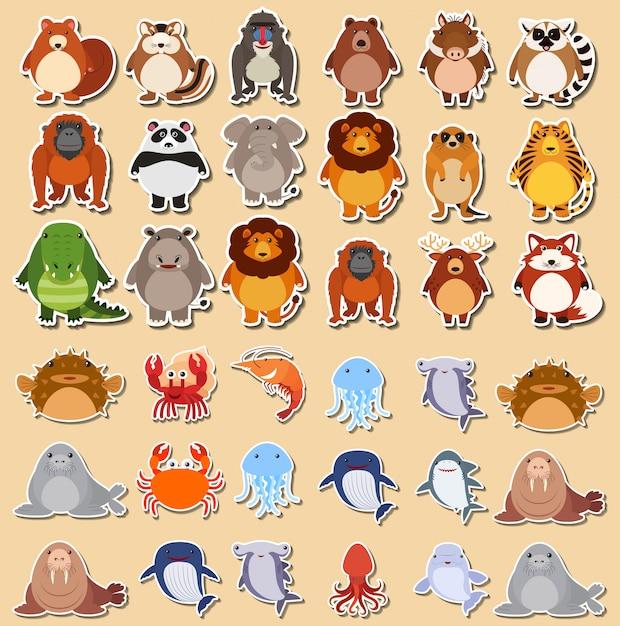 Set of cute animal sticker Free Vector