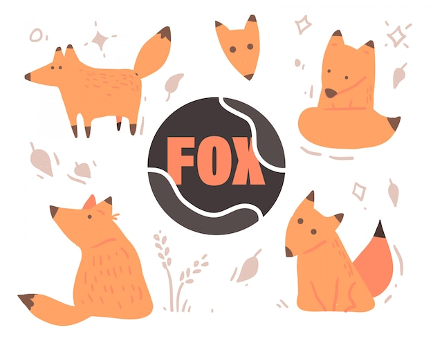 Set of cute cartoon foxes Premium Vector