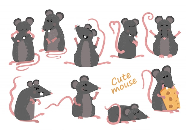 Set of cute mice in various poses in cartoon style Premium Vector