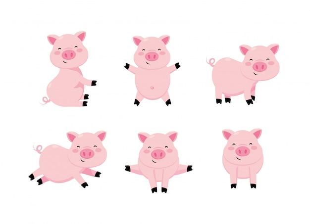 Set cute pig wild animal character Premium Vector