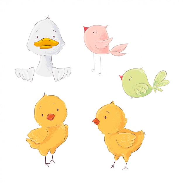 Set of cute poultry chickens and ducklings Premium Vector