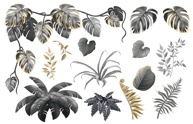 Set of dark, gold and silver leaves and plants. Premium Vector