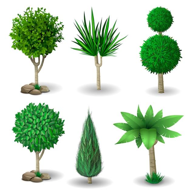 Set of decorative plants Premium Vector