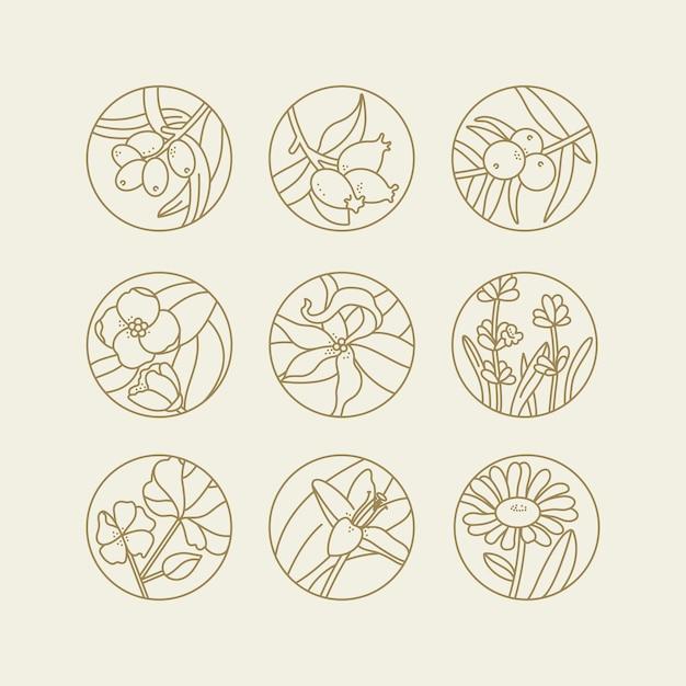 Set design templates and emblems  healthy and cosmetics oils Premium Vector