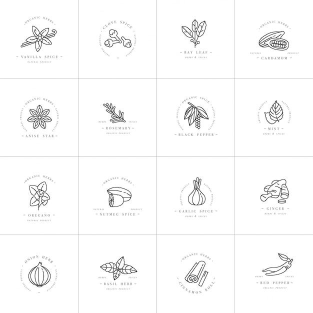 デザインテンプレートモノクロのロゴとエンブレム-ハーブとスパイスを設定します。別のスパイスのアイコン。白い背景に分離されたトレンディな直線的なスタイルのロゴ。 Premiumベクター