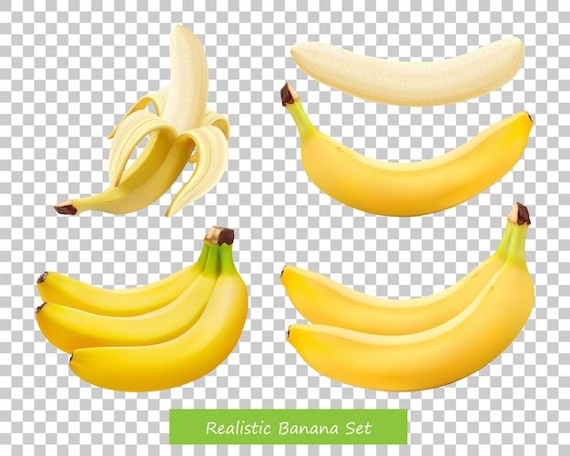 Set of different bananas Premium Vector