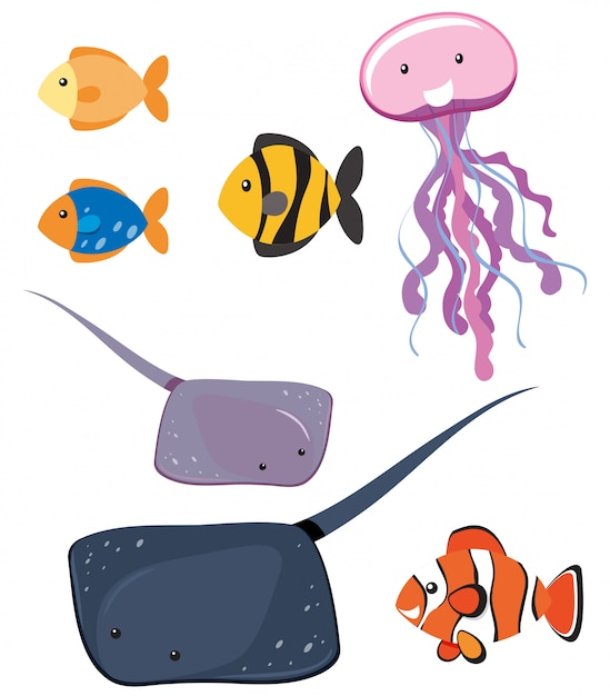 Set of different sea animals Free Vector