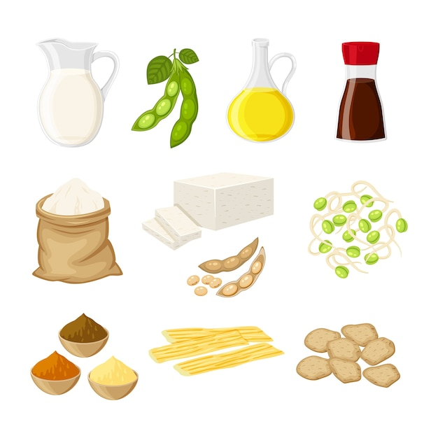 Set of different soy product in a flat cartoon style milk, oil, soy sauce, flour, tofu, miso, meat, tofu skin, sprouts  illustration isolted on white background. Premium Vector