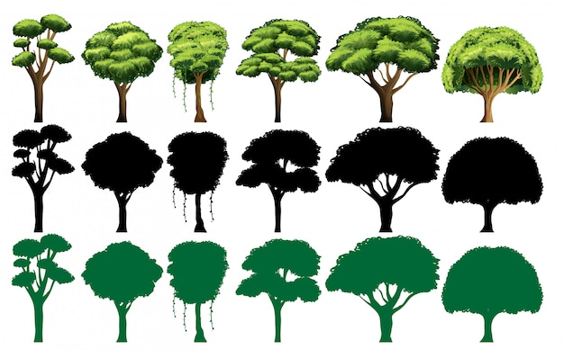 Set of different tree Free Vector