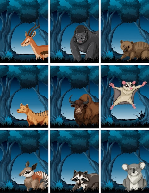 Set of  exotic animal in wild forest Free Vector