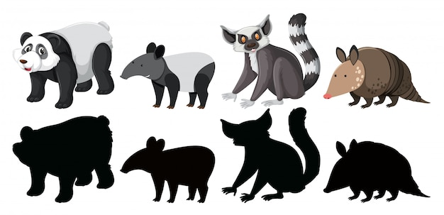 Set of exotic animals character Premium Vector