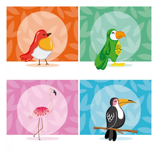 Set of exotic birds Premium Vector