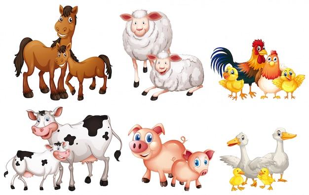 Set of farm animal Premium Vector