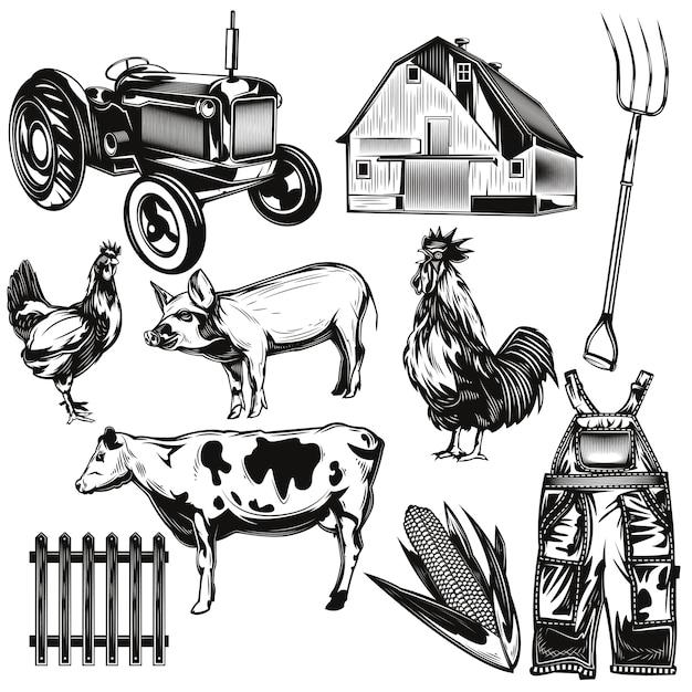 Set of farming elements Free Vector