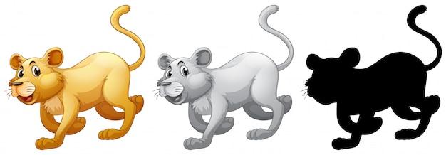 Set of female lion Free Vector