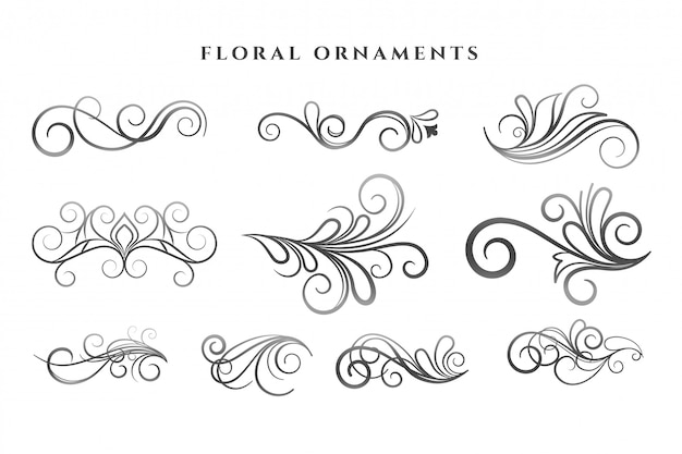 Set of floral ornaments decoration swirl patterns Free Vector