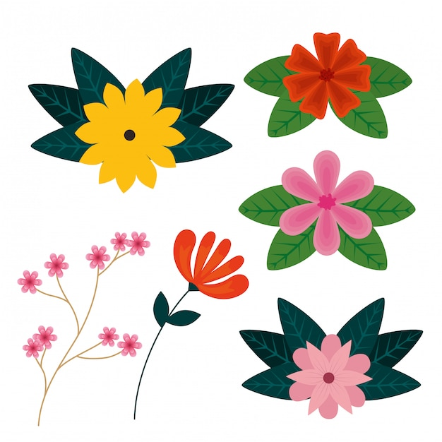 Set flowers plants with exotic leaves Free Vector