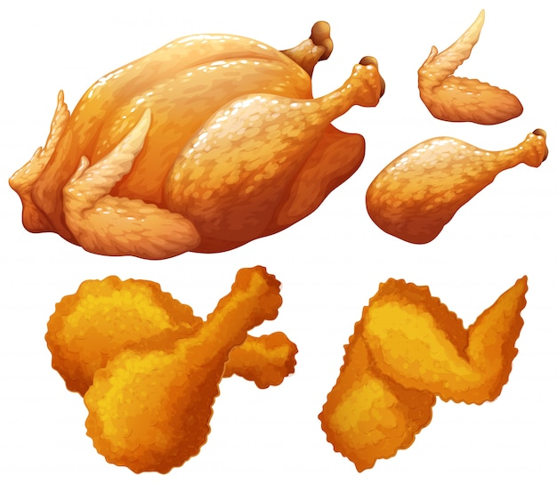 Set of food made by chicken Free Vector