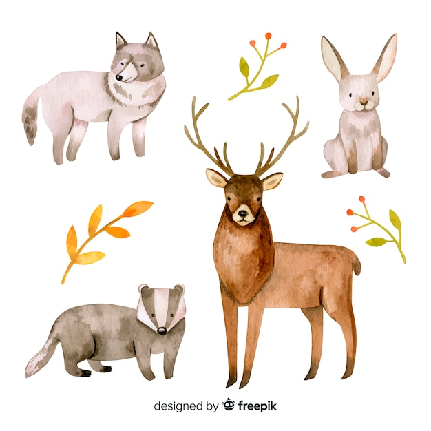 Set of forest animals watercolor style Free Vector