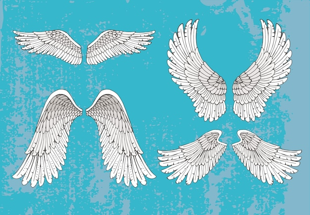 Set of four pairs of hand-drawn white wings in the open extended position with feather detail Free Vector