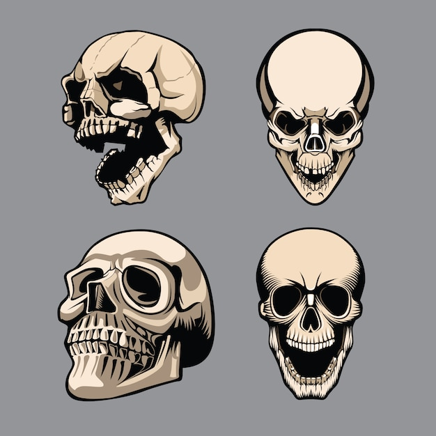 A set of four skulls in different positions Premium Vector
