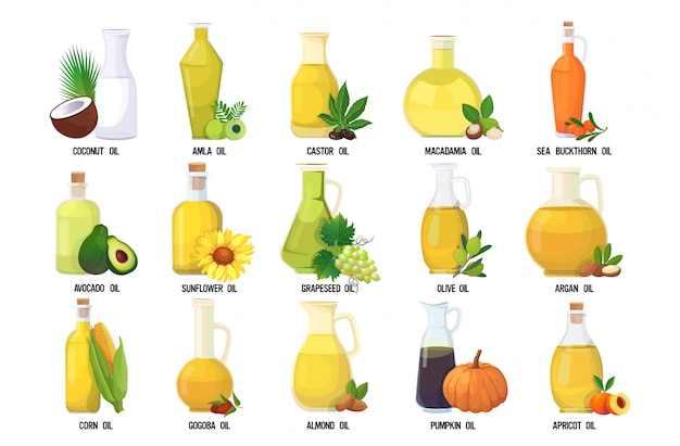 Set fresh oil glass bottles collection with different organic vegetables and fruits names isolated