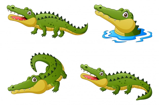 Set of funny crocodile cartoon. illustration Premium Vector