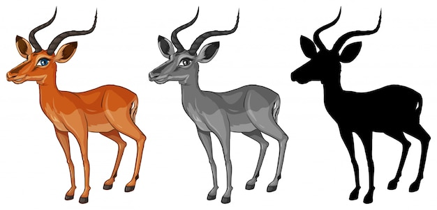 Set of gazelle character Free Vector