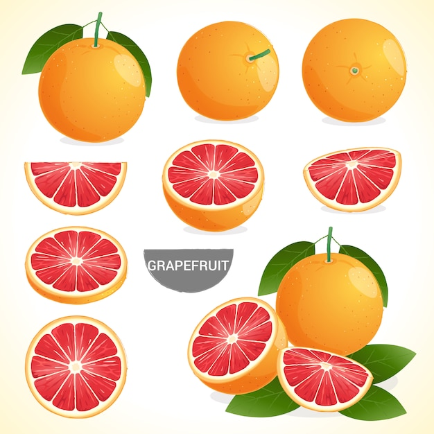 Set of grapefruit with leaf in various styles vector format Premium Vector