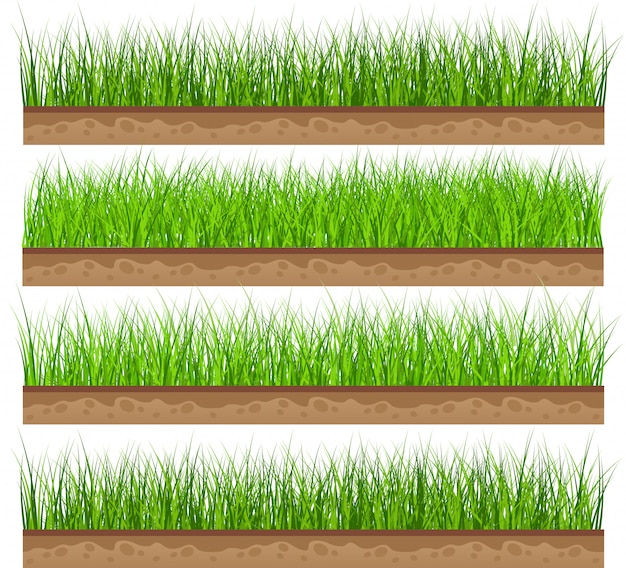 Set green grass with isolated. vector illustration Premium Vector