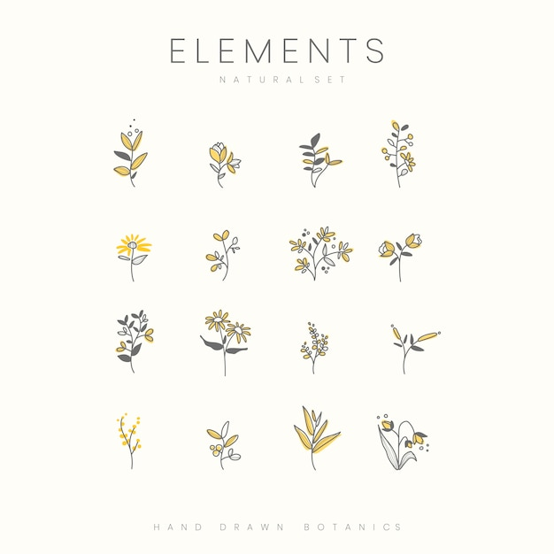 Set of hand drawn botanical elements vector Free Vector