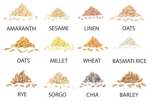 lysine-producing-cereal-grains-staple-crops