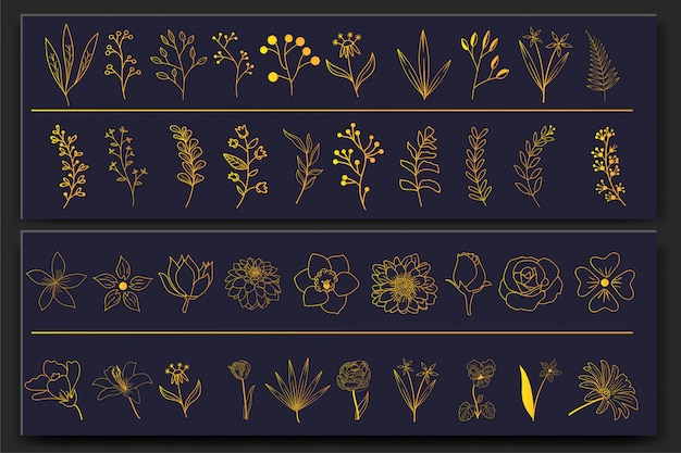 Set of hand drawn floral elements Premium Vector