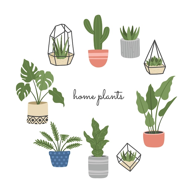 Set of hand drawn house plant, flowers in scandinavian style, different pots, indoor, home decoration. Premium Vector