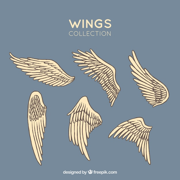 Set of hand drawn wings Free Vector