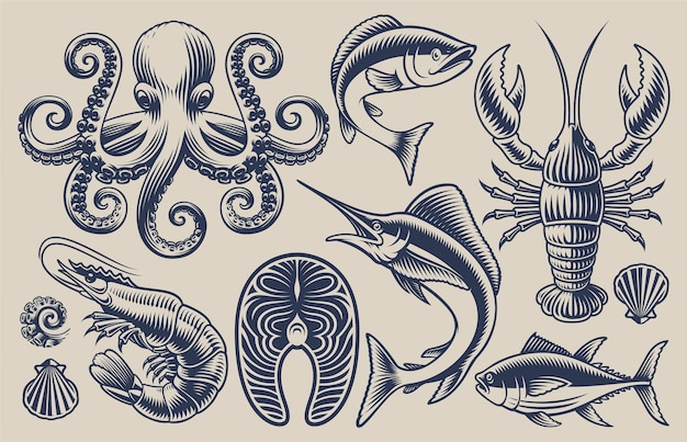 Set of  illustrations for sea food theme on a light background. Premium Vector