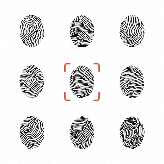 Set of individual fingerprints for personal identification. vector illustrations Premium Vector