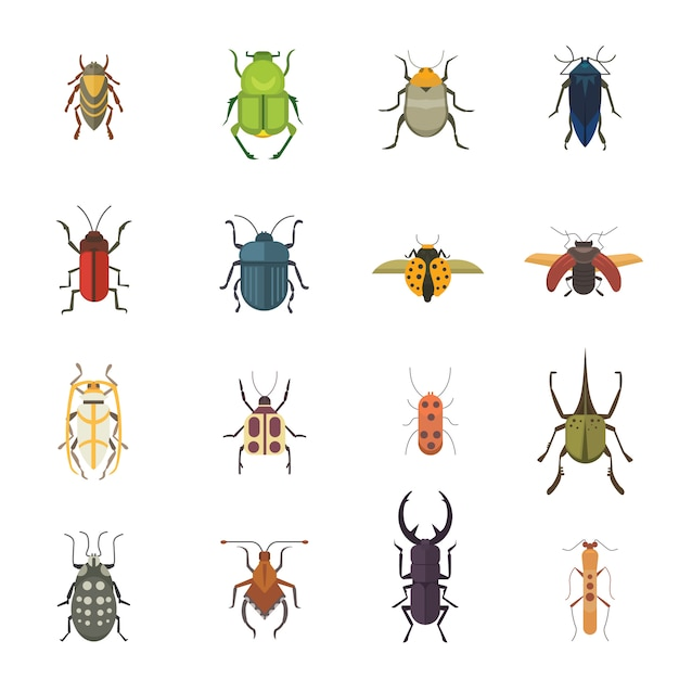 Set of insects flat style vector design icons. collection nature beetle and zoology cartoon illustration. bug icon wildlife concept Premium Vector