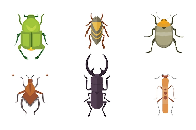Set of insects     icons. collection nature beetle and zoology cartoon illustration. bug icon wildlife concept Premium Vector