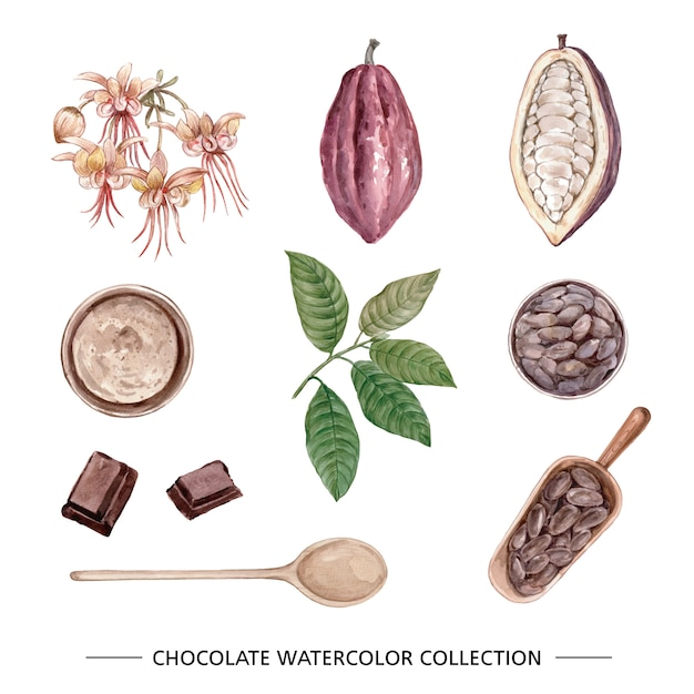 Set of isolated watercolor chocolate Free Vector