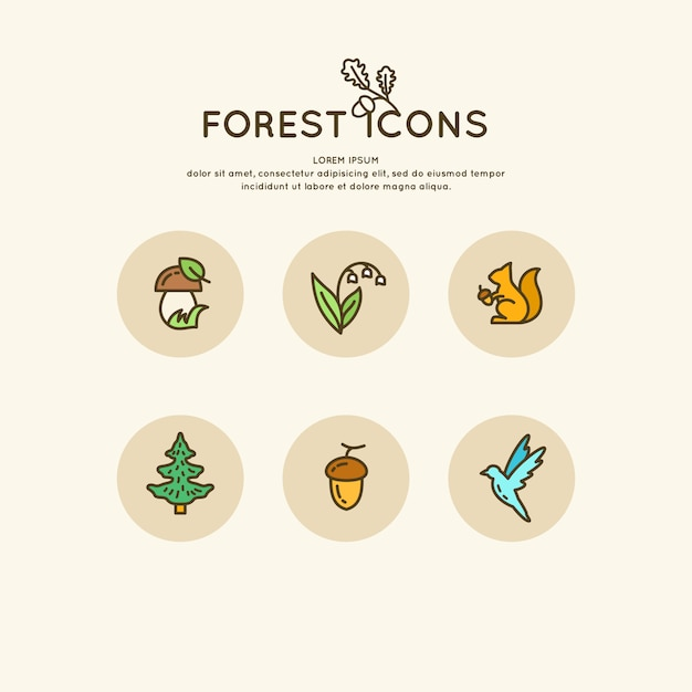 The set of linear forest of icons and illustrations. vector animals and plants Premium Vector