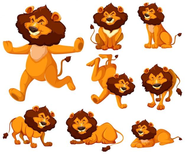 Set di personaggio dei cartoni animati di leone Vettore gratuito