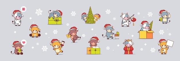 산타 모자에 작은 Oxes 설정 새해 복 많이 받으세요 귀여운 소 마스코트 만화 캐릭터 컬렉션 전체 길이 그림 인사말 프리미엄 벡터